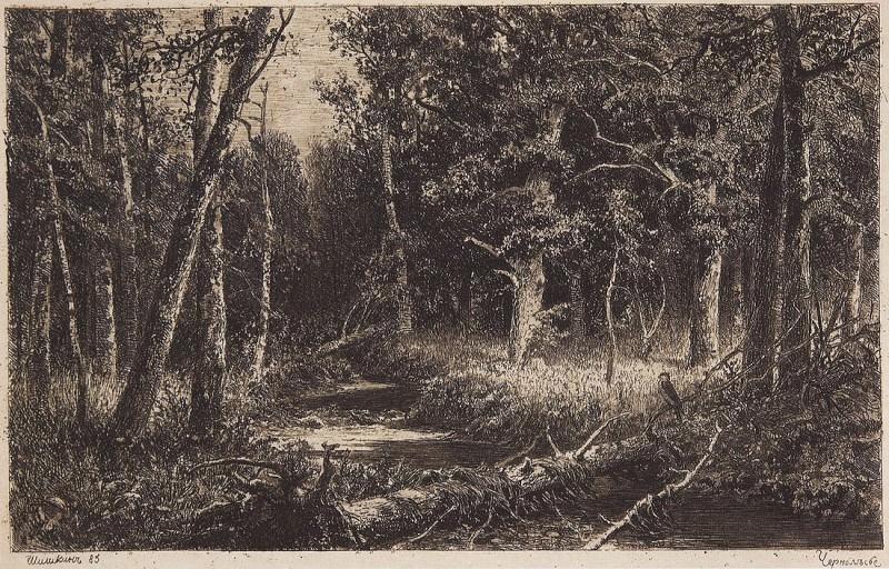 Chernolese. 1885 17, 5h27. Ivan Ivanovich Shishkin