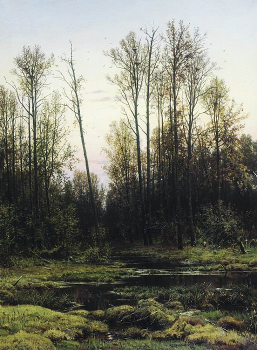 Forest in the spring of 1884 142h105. Ivan Ivanovich Shishkin