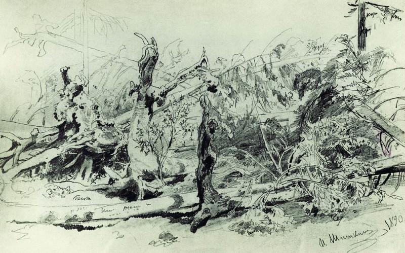 deadfall 1890 Paper. pencil. Ivan Ivanovich Shishkin