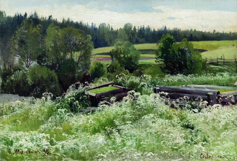 In Siverskaya 1896. Ivan Ivanovich Shishkin