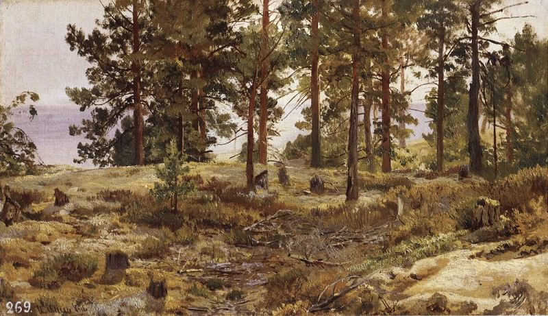 On the sandy soil. Mary Howie on the Finnish railway. 1889 35, 5h50. Ivan Ivanovich Shishkin