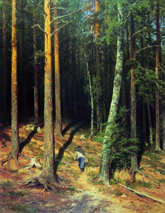 1878 Pine Forest 115h88. Ivan Ivanovich Shishkin