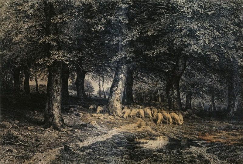 herd of sheep in the forest. Paper. ink, pen 36h53. Ivan Ivanovich Shishkin