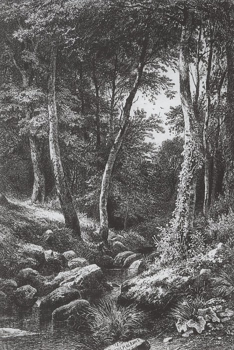 Stream in the woods. 1870 21, 8h15, 2. Ivan Ivanovich Shishkin