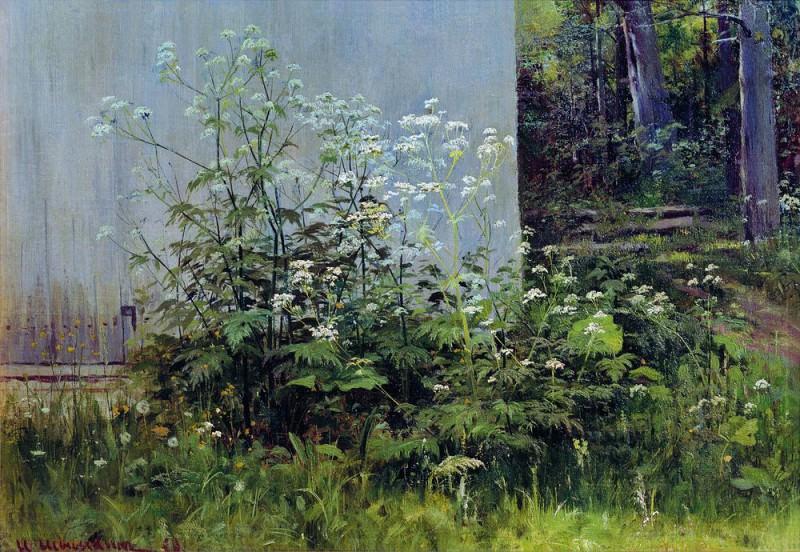 Flowers fence. Mid-1880 38h54. Ivan Ivanovich Shishkin