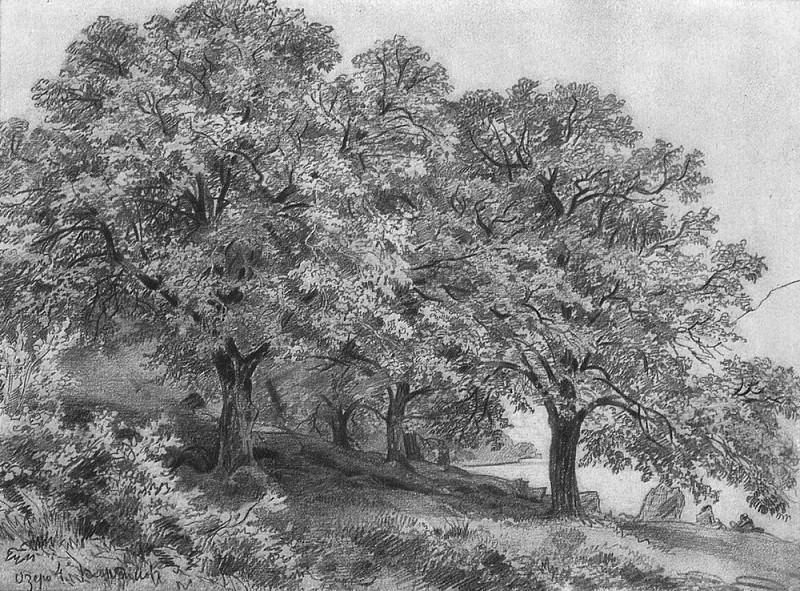 Lake 1880, 21, 5h28, 5. Ivan Ivanovich Shishkin