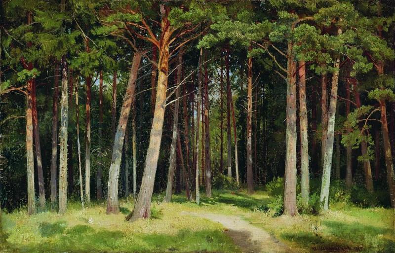 1885 Pine Forest 41, 8h62. Ivan Ivanovich Shishkin