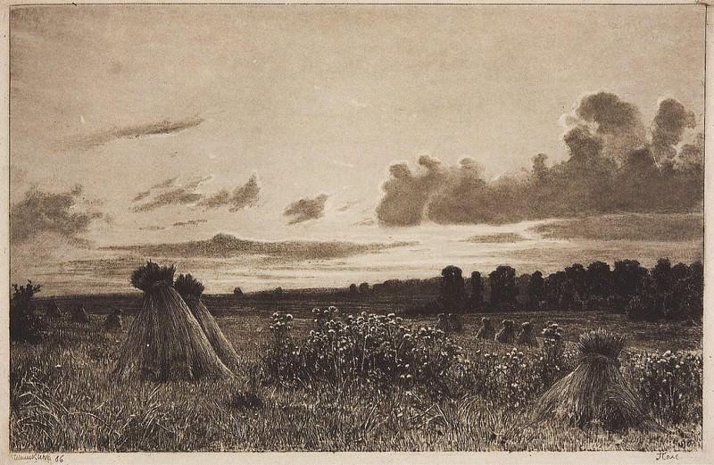 Field. 1886 21, 8h32, 5. Ivan Ivanovich Shishkin