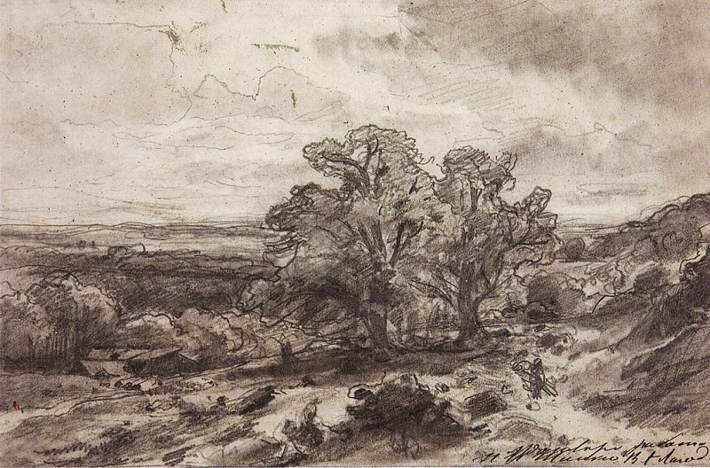 Landscape with trees. 1864 18h27, 4. Ivan Ivanovich Shishkin