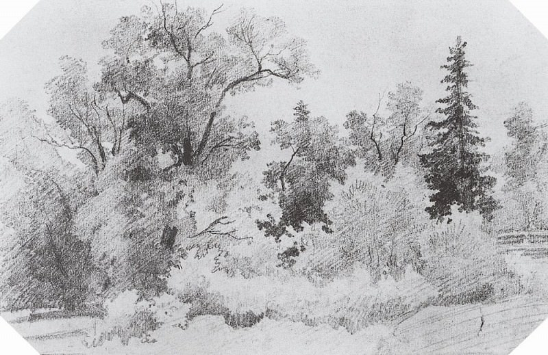 Edge of the Forest 1850 12, 7h19. 4. Ivan Ivanovich Shishkin
