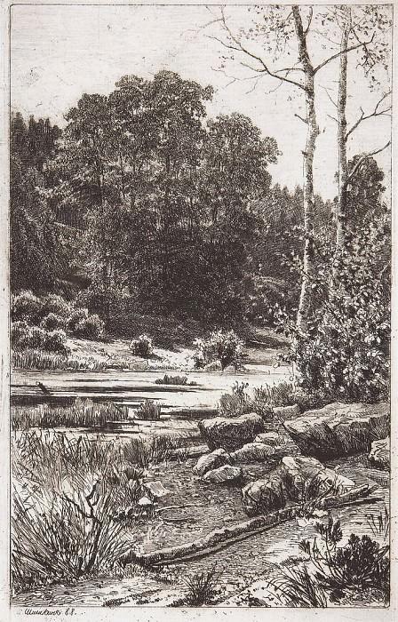 Dry birch trees. 1888 24h14, 5. Ivan Ivanovich Shishkin
