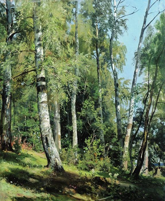 1896 Birchwood 105. 8h69, 8. Ivan Ivanovich Shishkin