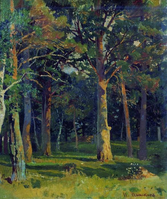 Forest, pine 45, 5h38, 5. Ivan Ivanovich Shishkin