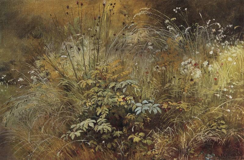 Grass. Study 1892 24. 7h39. 6. Ivan Ivanovich Shishkin