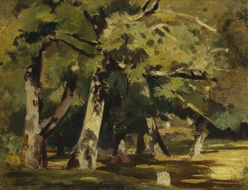 Oaks sunlight 1890 22х28, 5. Ivan Ivanovich Shishkin