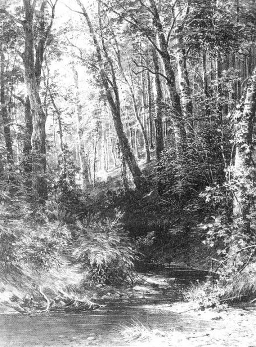 Stream in the Forest 1880, 67h52, 2. Ivan Ivanovich Shishkin