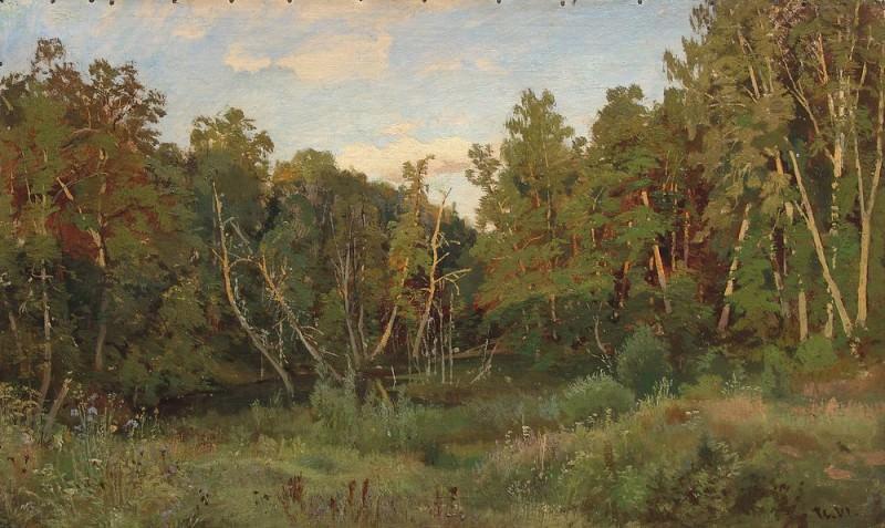 Forest landscape. Ivan Ivanovich Shishkin