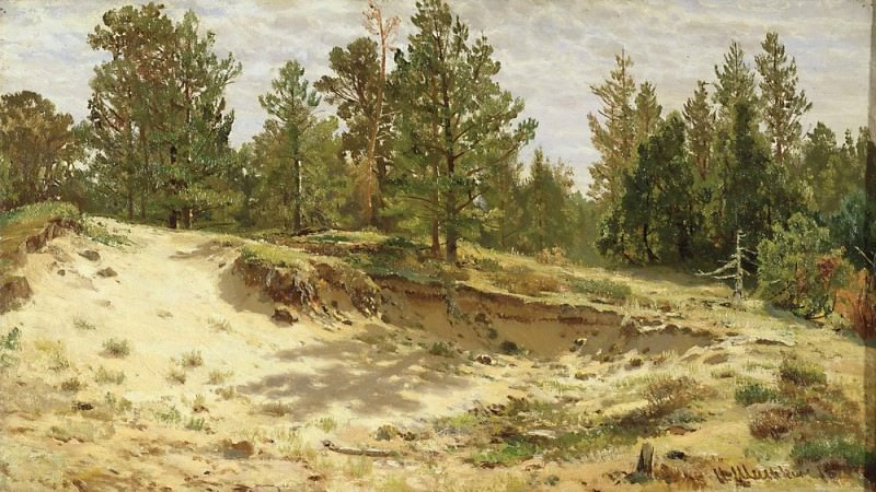 Young pines in the sandy cliff 1890 33h59. Ivan Ivanovich Shishkin