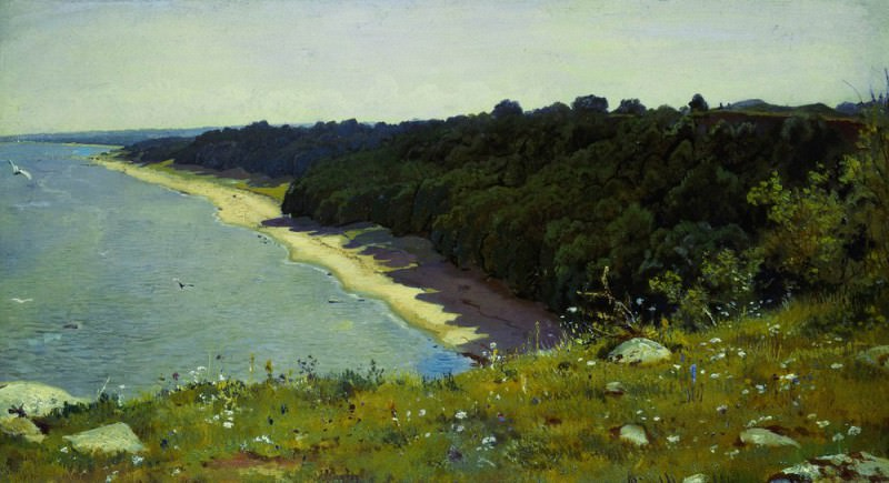 By the sea. Etude 1889 36. 6h66. Ivan Ivanovich Shishkin