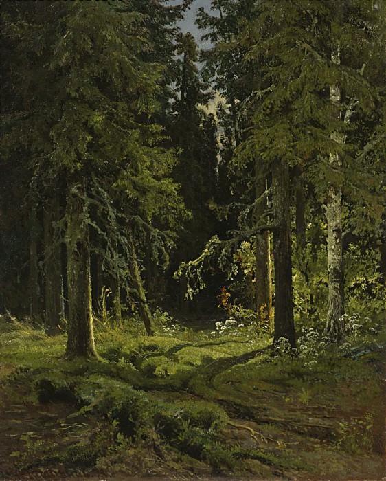 Лесной пейзаж 1878 45х35. Иван Иванович Шишкин