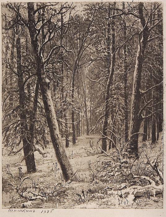Winter. 1885 24, 3h19. Ivan Ivanovich Shishkin
