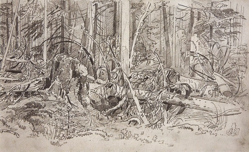 Forest blockage. The second half of 1870 19, 9h31, 7. Ivan Ivanovich Shishkin