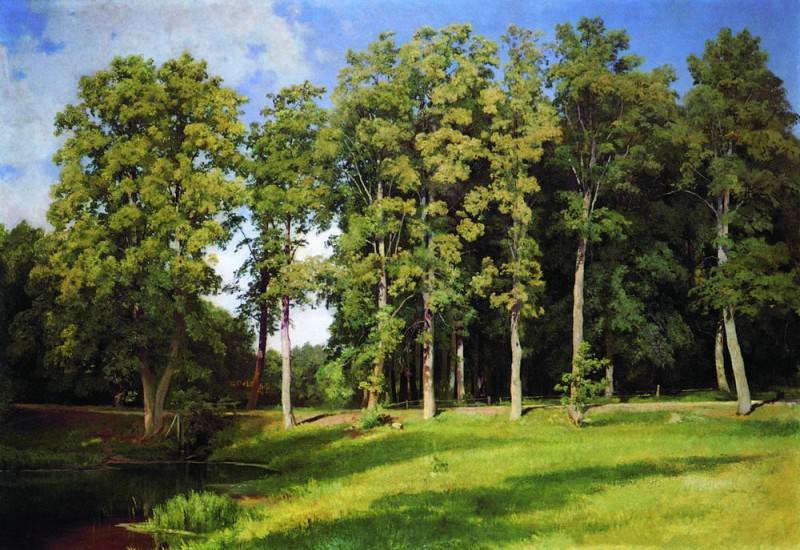 grove near the pond. Preobrazhenskoe 1896 97h107. Ivan Ivanovich Shishkin
