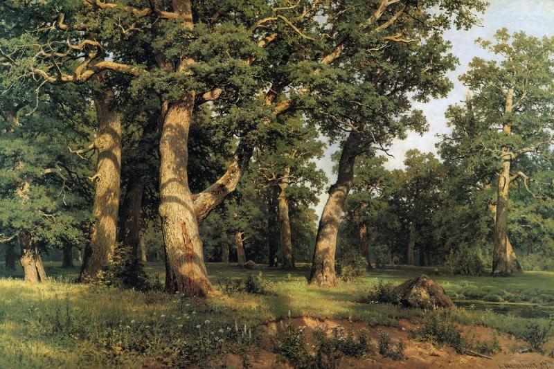 oak. grove 1887125h193. Ivan Ivanovich Shishkin