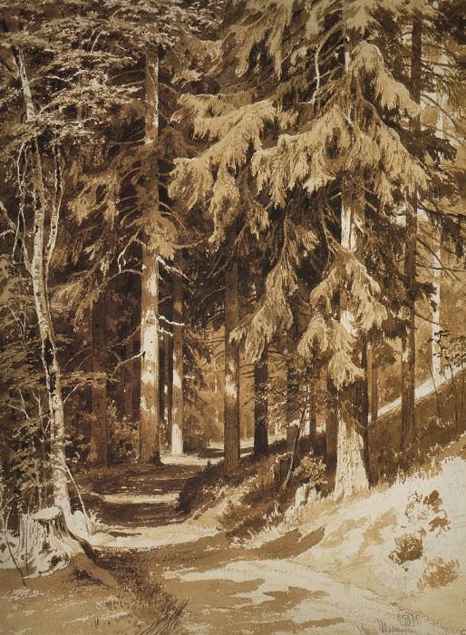 Дорожка в лесу. 1891 Бумага, сепия, граф. карандаш 61. 4х44. Иван Иванович Шишкин