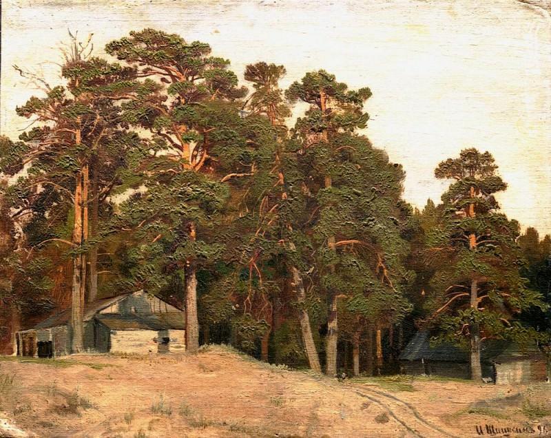 sandy road 1898. Ivan Ivanovich Shishkin