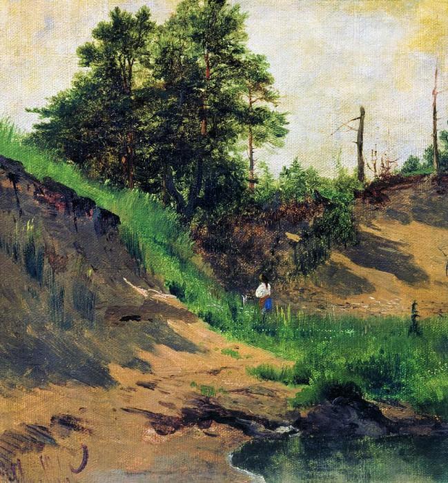 Landscape 1896. Ivan Ivanovich Shishkin