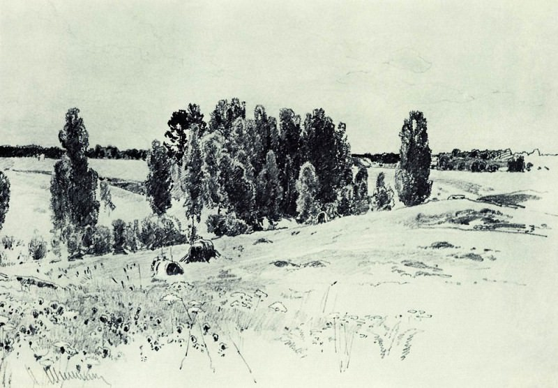 Fields and groves of 1880, 23, 432, 4. Ivan Ivanovich Shishkin