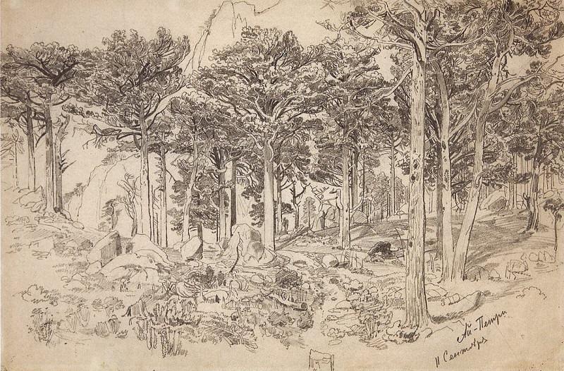 Ai-Petri. 1879 31, 3h47. Ivan Ivanovich Shishkin