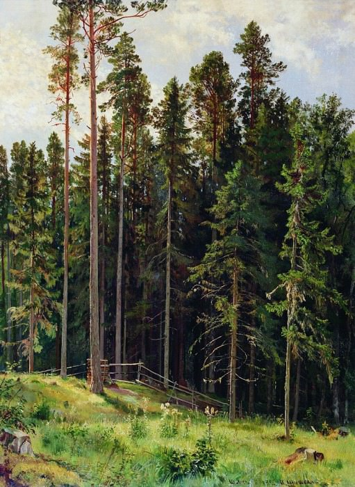 1892 Forest 112h86. Ivan Ivanovich Shishkin