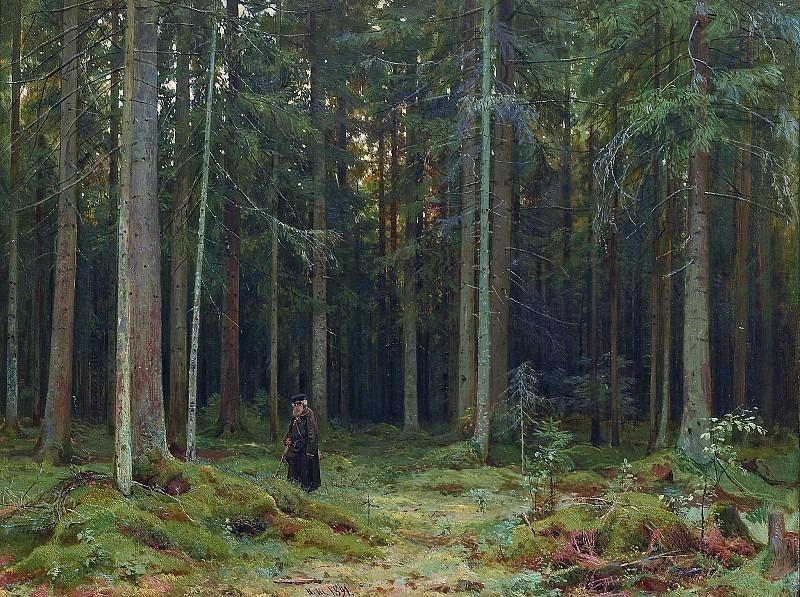 In the forest of Countess Mordvinova. Peterhof. Ivan Ivanovich Shishkin
