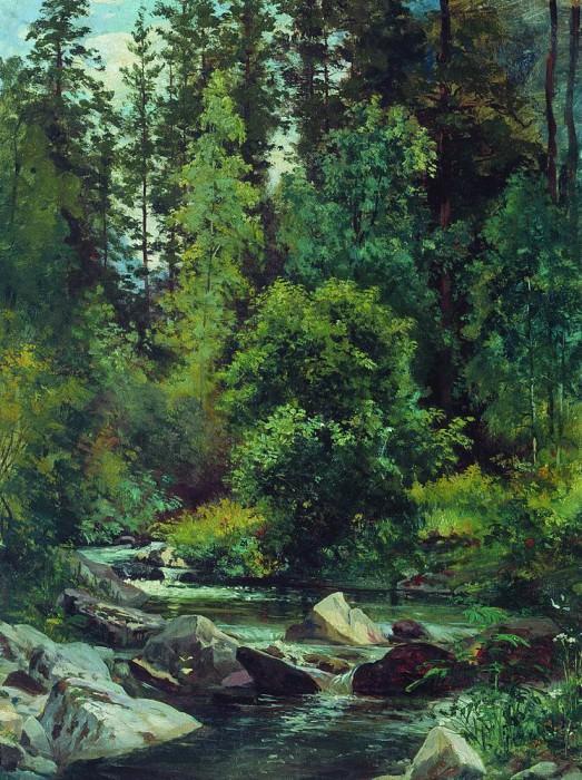 Forest River 54, 5h41. Ivan Ivanovich Shishkin