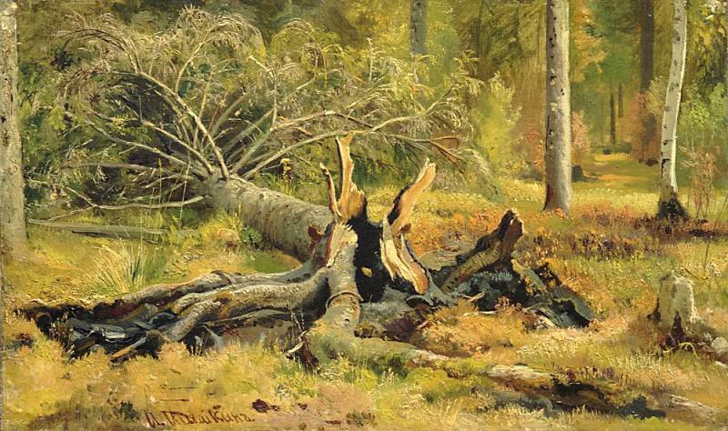 Fallen Tree. Ivan Ivanovich Shishkin