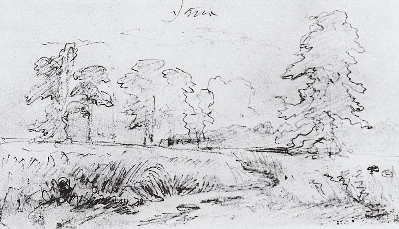 Sketch for the painting Rye 1878 14, 4h23, 6. Ivan Ivanovich Shishkin