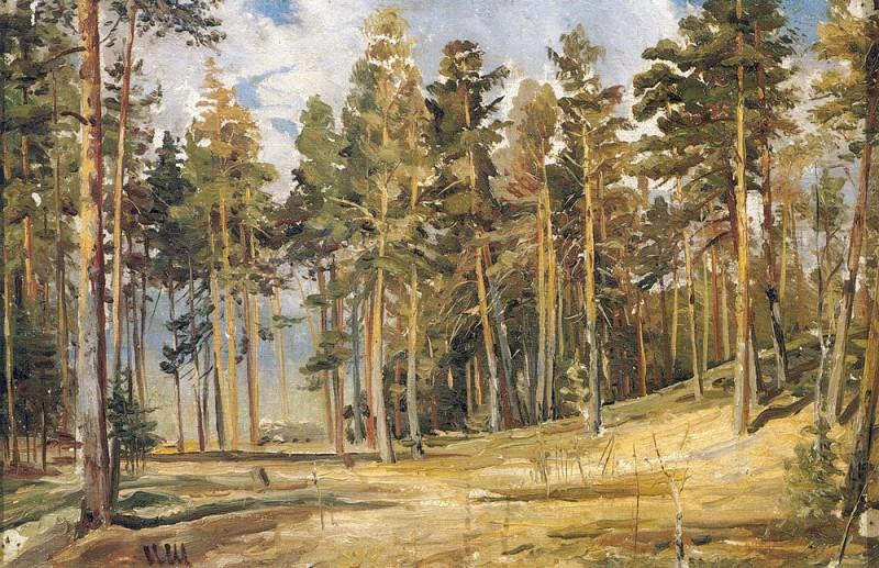 Pine. A sunny day the 1890 23h35. Ivan Ivanovich Shishkin