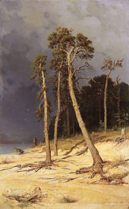sandy shore. 1879 142, 2h88. Ivan Ivanovich Shishkin