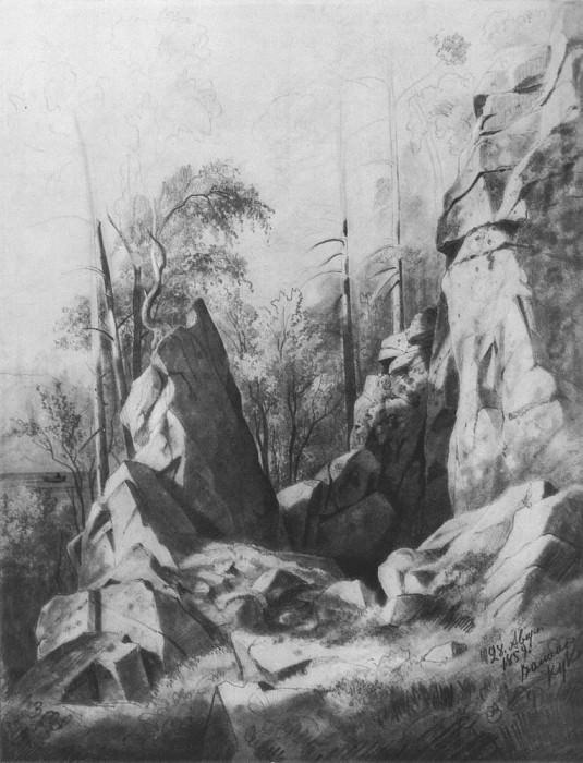 Rock Island Valaam. Kukk 1859 59, 5h46. 2. Ivan Ivanovich Shishkin