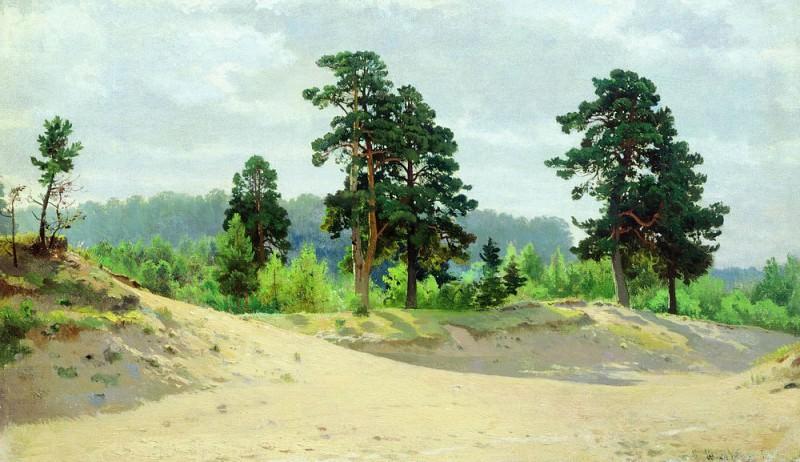 Опушка леса 1890 35х59. Иван Иванович Шишкин