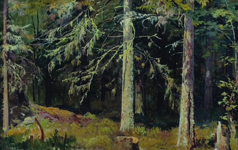 Еловый лес 1890 36х59. Иван Иванович Шишкин