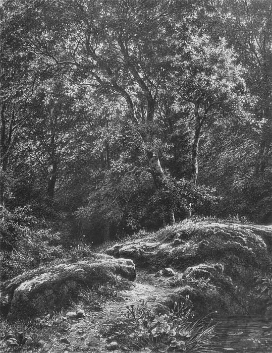 track in the woods. 1871 46, 2h34, 9. Ivan Ivanovich Shishkin