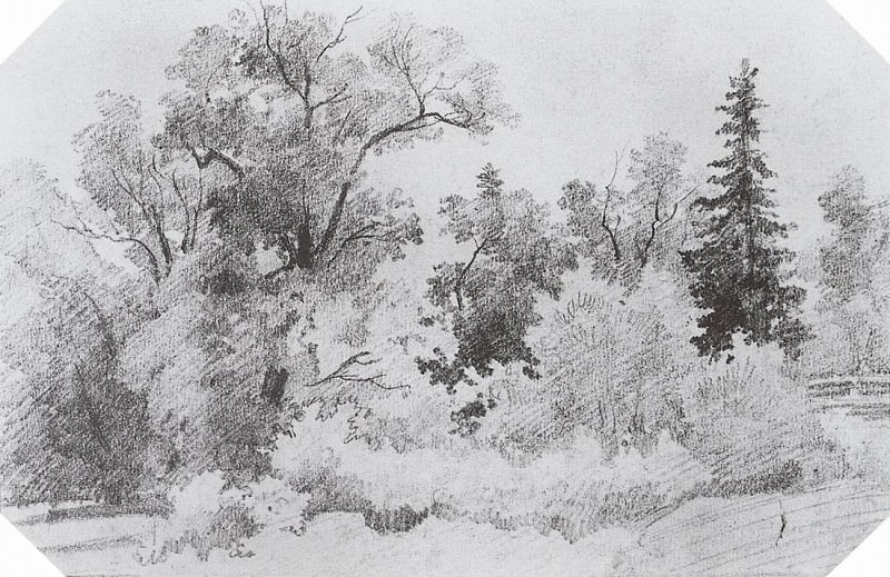 Edge of the Forest. 1850 12, 7h19, 4. Ivan Ivanovich Shishkin