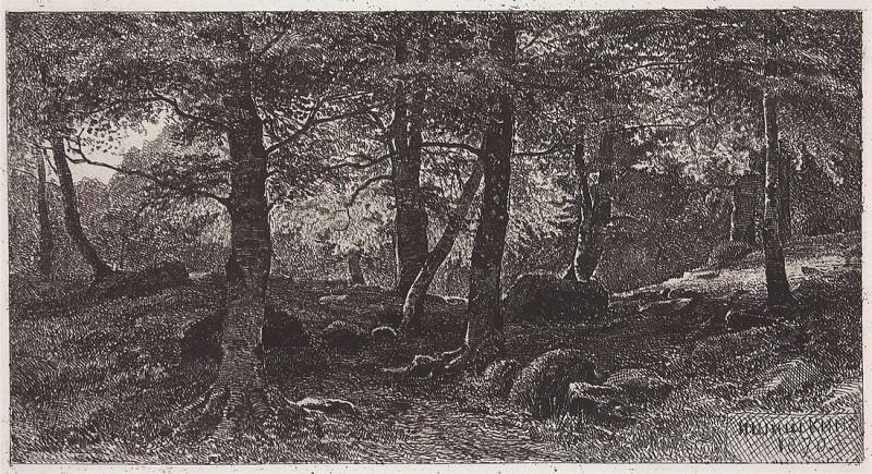 Beech Grove. 1870 13, 3h24, 2. Ivan Ivanovich Shishkin
