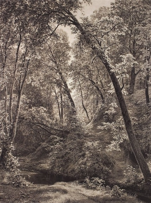 On the creek. 1895 106h80, 5. Ivan Ivanovich Shishkin