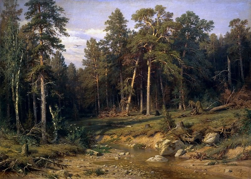 Pine Forest. Pine Forest in the Vyatka province. Ivan Ivanovich Shishkin