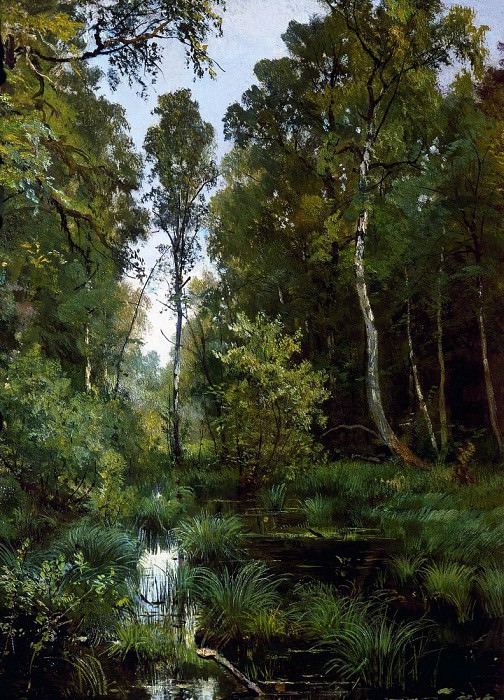 overgrown pond at the edge of the forest. Siverskaya. 1883 56h42. Ivan Ivanovich Shishkin