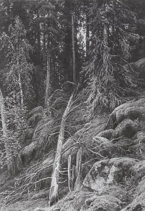 Taiga. 1880 51, 1h36, 2. Ivan Ivanovich Shishkin